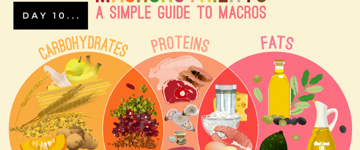 Macronutrients and what does that even mean!